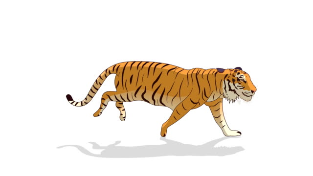 tiger running animation - fairy stock videos & royalty-free footage