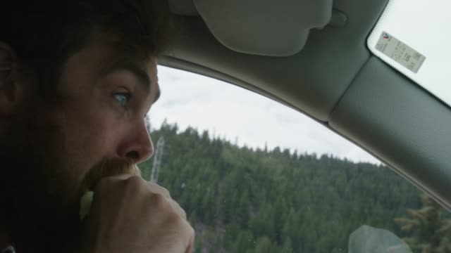 vídeos de stock e filmes b-roll de tight shot of a caucasian man in his twenties with a beard taking a sandwich out of a to-go bag and biting it while driving in a mountainous forest - interior de carro