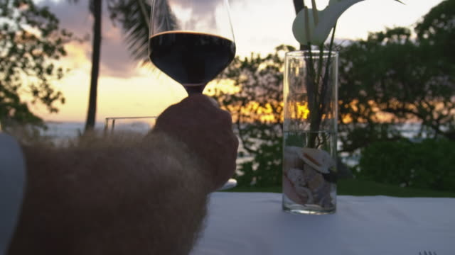 tight shot on four wine glasses toasting with the sunset in the background - kahuku stock videos & royalty-free footage