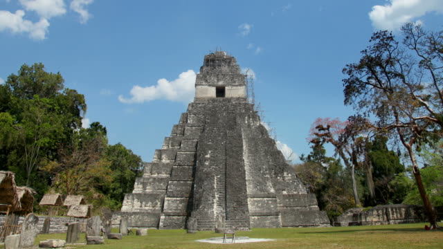 tikal, guatemala - mayan stock videos & royalty-free footage