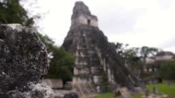 Tikal maya ruins / temple