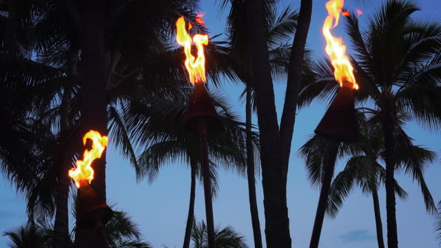 stockvideo's en b-roll-footage met tiki torches burning on waikiki beach at night, 4k ultra hd - tiki torch