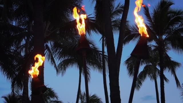 vídeos de stock, filmes e b-roll de tiki torches burning on waikiki beach at night, 4k ultra hd - tocha tiki