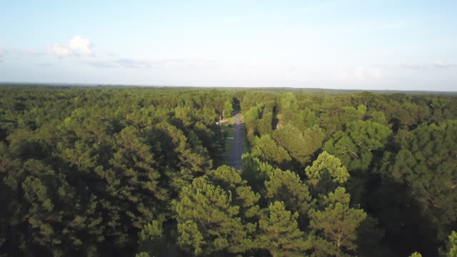 tilt down aerial, roadway in rural georgia - georgia country stock videos and b-roll footage