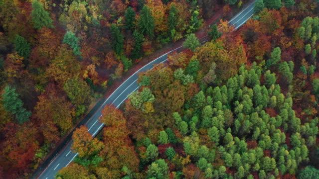 stockvideo's en b-roll-footage met tilt down aerial shot of a car on a mountain road during autumn, italy - verwonderingsdrang