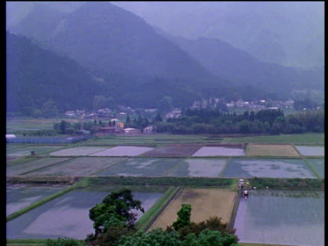 vidéos et rushes de tilt down and pan left from misty japanese mountainside to waterlogged rice fields - 1990 1999
