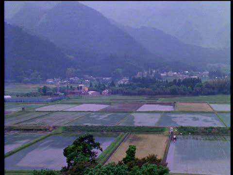 vídeos de stock, filmes e b-roll de tilt down and pan left from misty japanese mountainside to waterlogged rice fields - 1990 1999