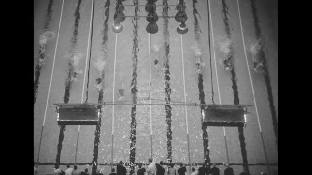 tilt down as women dive to start race / they swim to end of pool and reverse / tilt down of women swimming to end of race / the race ends / woman in... - podio video stock e b–roll