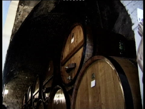 tilt down from archway roof onto rows of stacked wine barrels in wine cellar montepulciano - montepulciano stock videos & royalty-free footage