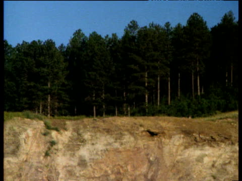 tilt down from forests in black hills of south dakota to rock strata revealed by quarry excavations - rock strata stock videos & royalty-free footage