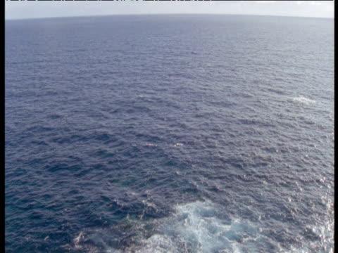 tilt down from horizon to rocky coast, azores - 大西洋諸島点の映像素材/bロール