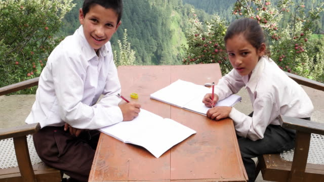 tilt down from mountains to siblings studying and then looking at the camera confidently and smiling - pencil sharpener stock videos & royalty-free footage
