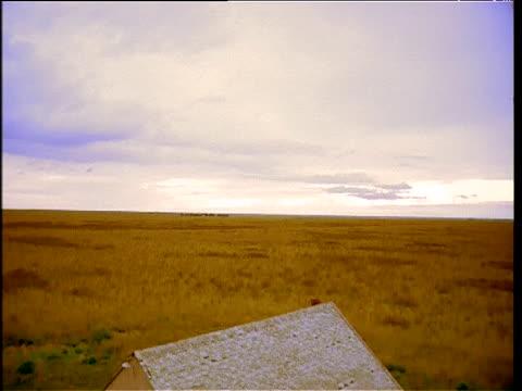 tilt down from open plains to empty shell of farmhouse kansas - farmhouse stock videos & royalty-free footage