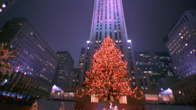 tilt down from rockerfeller center to ice rink below surrounded with christmas trees available in hd. - rockefeller center video stock e b–roll