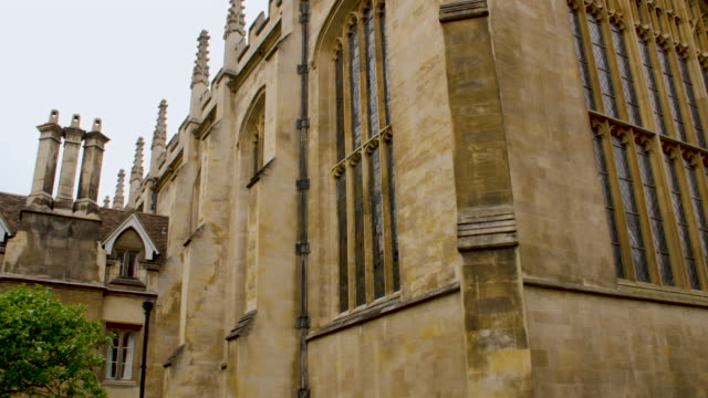 tilt down from the exterior of a chapel to the isaac newton apple tree at trinity college, cambridge. - cambridge university stock videos and b-roll footage