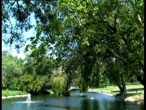 stockvideo's en b-roll-footage met tilt down from tree to pond with fountain japan - 1991