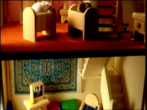 tilt down mice crawling around toy house - dollhouse stock videos & royalty-free footage