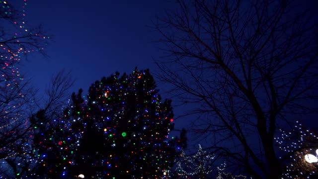 tilt down, new mexico mark illuminated by christmas lights - クリスマスライト点の映像素材/bロール