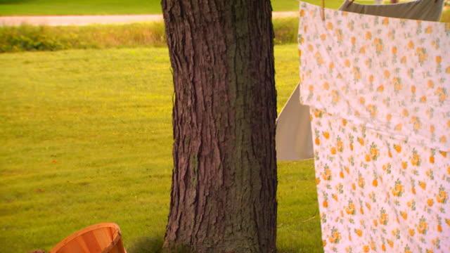 vidéos et rushes de tilt down of tree trunk holding laundry line - drap