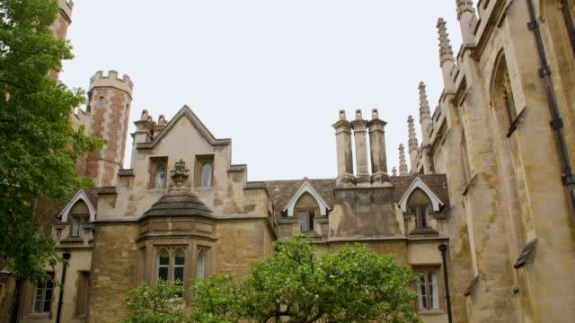 tilt down onto isaac newton's apple tree at trinity college, cambridge. - cambridge england stock videos and b-roll footage