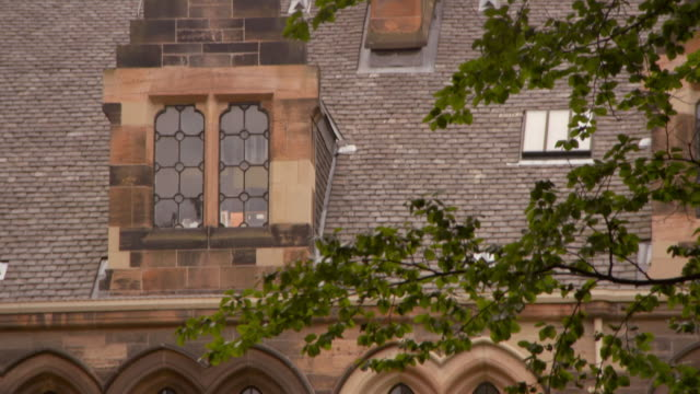 tilt down shot of tree branches against university building in city - glasgow, scotland - natural arch stock videos & royalty-free footage