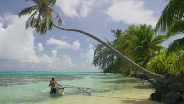 Tilt down to men fishing in Tahiti lagoon pulling net into outrigger under palm tree / Moorea, French Polynesia