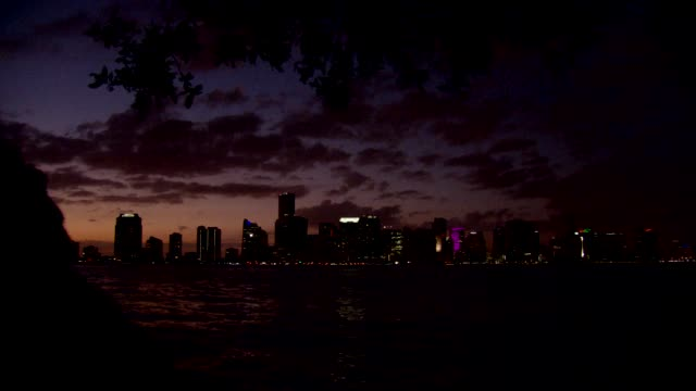 tilt down to reveal miami skyline at sunset - baia di biscayne video stock e b–roll