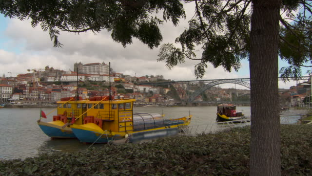 tilt pan: riverside tree pans to colorful barges in river with city backdrop - portugal stock videos & royalty-free footage