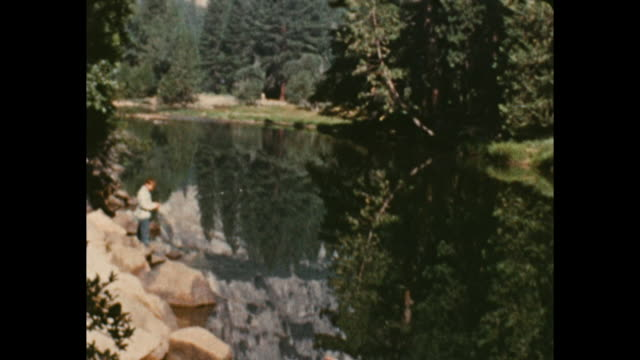 tilt shot of the reflection of pine trees in the water camera tilt up to see the lake trees and mountain - yosemite national park stock videos & royalty-free footage