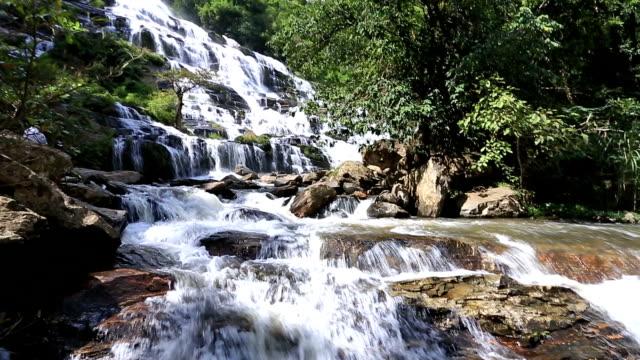 stockvideo's en b-roll-footage met hd tilt: tropical waterfall in forest - hd format