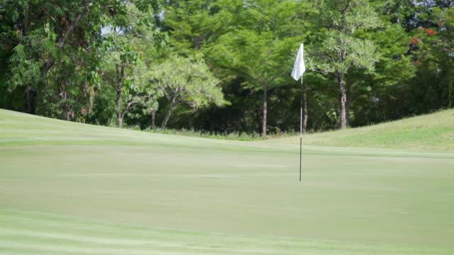 vídeos de stock e filmes b-roll de tilt up 4k empty golf course - golf