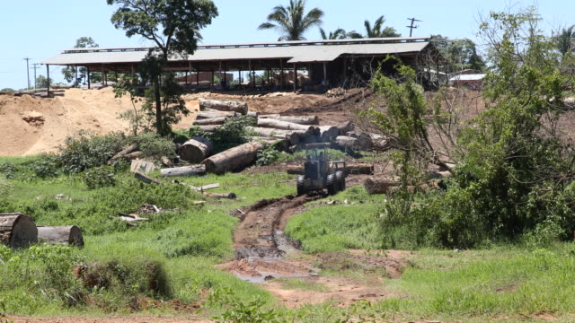 A tilt up and a pan to the right is showing a traktor which is carrying a log on a muddy road in front of a lumberyard in the southern Amazonas...