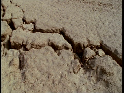 vidéos et rushes de cu tilt up, fault line running through desert, gujarat, india - géologie