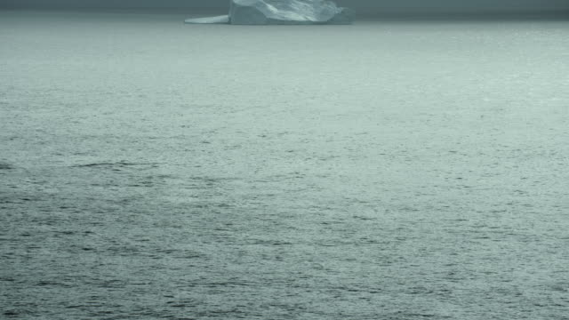 Tilt Up From Arctic Waters To Iceberg