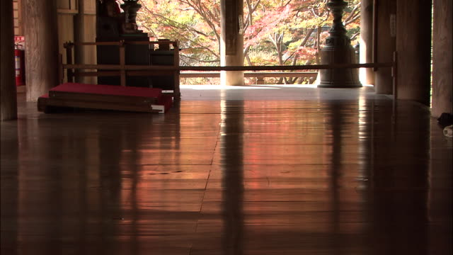 tilt up from floor of hasedera temple to view beyond temple of autumn foliage on trees nara - 寺院点の映像素材/bロール