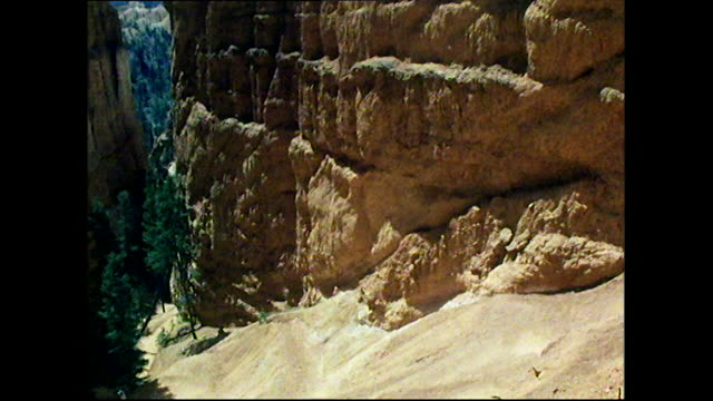 tilt up from people on canyon floor up rockface - utah点の映像素材/bロール