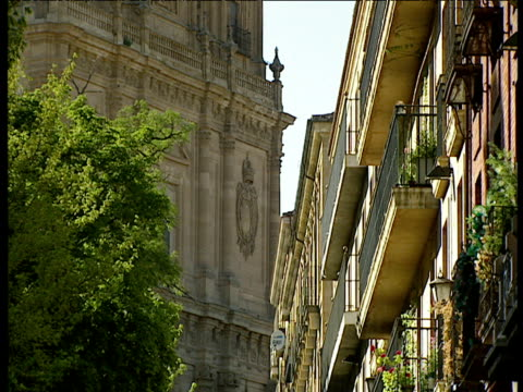 tilt up from row of balconies to the spires of a historic building in salamanca - 尖塔点の映像素材/bロール