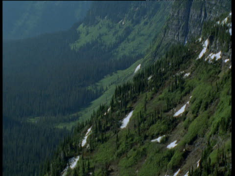 tilt up from valley to craggy mountain side, glacier national park, montana - glacier national park us stock videos and b-roll footage