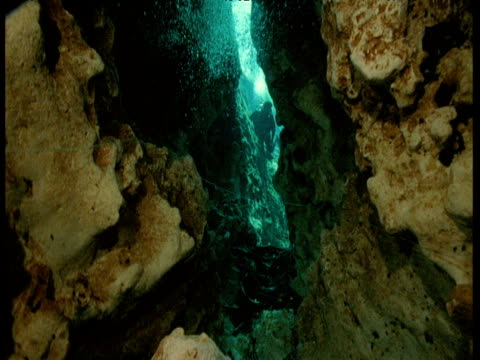 Tilt up in underwater cave with scuba diver and bubbles, Florida