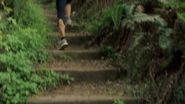 Tilt up medium tracking shot woman running up steps on forest trail/ California