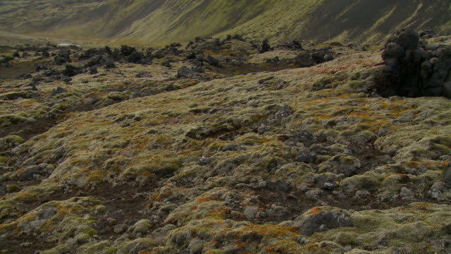 panoramica verso l'alto su verde montagna in jan mayen norvegia - muschio video stock e b–roll