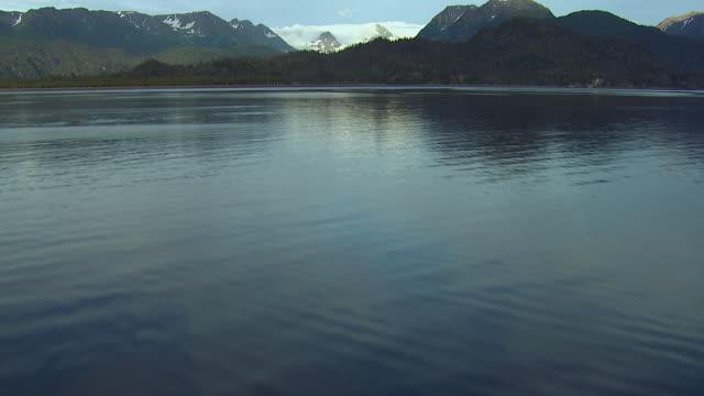 Tilt Up Over Alaskan Bay Near Glacier