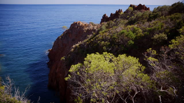 stockvideo's en b-roll-footage met tilt up over green foliage and azure seawater - baai