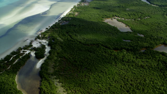 tilt up over scenic yucatan coastline - quintana roo stock videos and b-roll footage