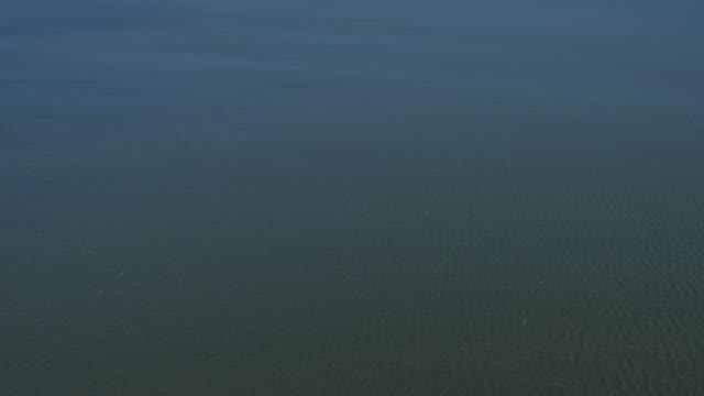 vidéos et rushes de tilt up over water near alaskan coast - hémisphère nord