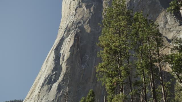 tilt up panning shot of scenic view of trees and el capitan / yosemite valley, california, united states - エルキャピタン点の映像素材/bロール