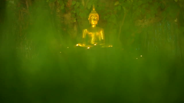vídeos de stock e filmes b-roll de tilt up shot of golden buddha statue in meditation lotus pose - buda