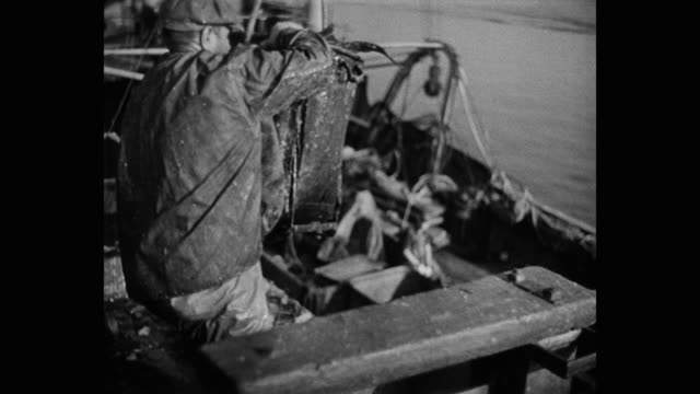 tilt up shot of man unloading bucket of fish on trawler - nautical vessel stock videos & royalty-free footage