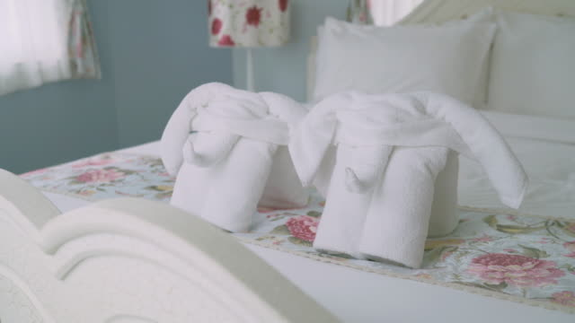 tilt up shot of two elephants towels on bed - obsessive stock videos & royalty-free footage