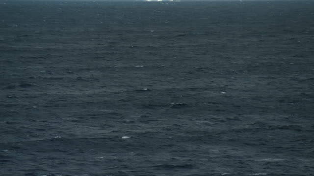 tilt up shot revealing lone iceberg on sea waters - northwest passage stock videos and b-roll footage